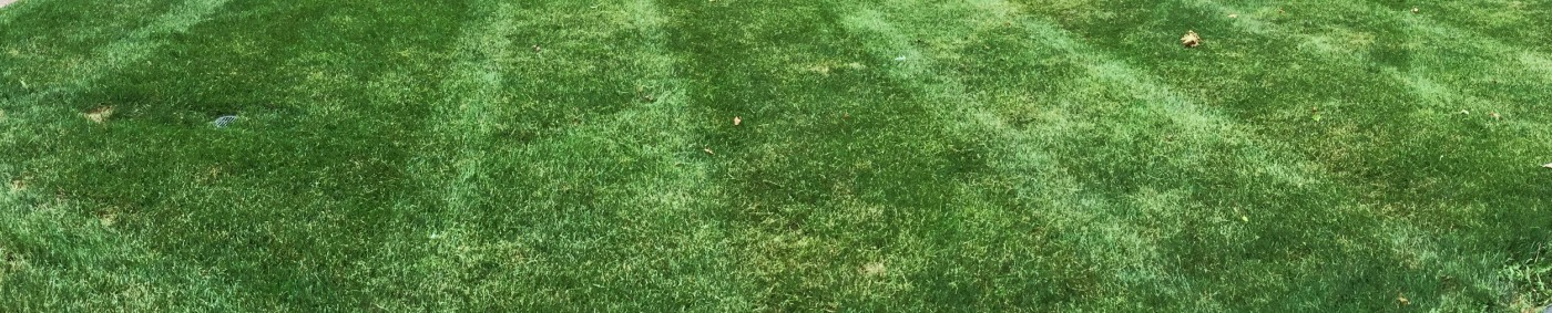 DuPage Lawn Care